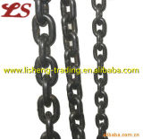 Factory G43 Black Conveyor Chains for Liffiting
