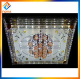 Newest Fashionable Crystal Ceiling Lamp LED Light Made in China