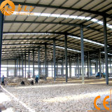 CE Certificated Light Steel Structure Warehouse (SSW-58)