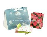 High Quality Printing Custom Paper Gift Bag