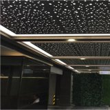 High Quality Metal Special Perforated Panel for Interior Ceiling Decorative