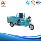 Three Wheeled Motor Cycle for Cargo