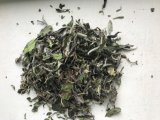 EU Standard White Peony Tea Leaf 6901