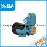220V/50Hz Single Phase Automatic Domestic Vortex Pump Mqs126