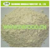 Onion Powder 80-100mesh