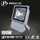 Well Sale Advanced Technology OEM Garden LED Flood Lighting