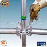 SGS Certified Steel Ringlock Scaffolding