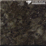 Polished Verde Fountain Granite for Countertops & Wall (MT058)