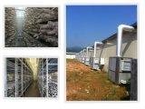 Mushroom Climate Control Machine with Fresh Air System
