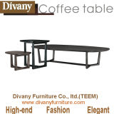 New Style Modern Chinese Furniture for Interior Design (T-57)