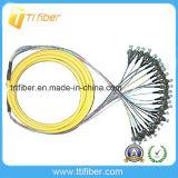 FC Upc Singemode 24 Core Fiber Optic Pigtail