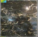 Ceramic Tile Floor Tile Wall Tile S4009