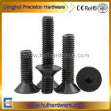 Hexagon Socket Csk Head Machine Screw/Hex Socket Flat Head Machine Bolt