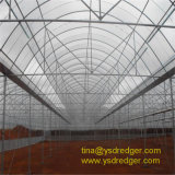 Large 10 Meters Multi-Span Film Greenhouse Vegetables Greenhouse