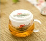 High Borosilicate Glass Tea Cup with Ceramic Infusion