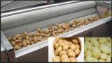 Stainless Steel Potato Washing Peeling Machine/Washer 1200
