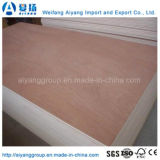 9mm/17mm Bintangor/Okoume/Pine/Bich Plywood for Furniture