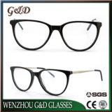 Popular Design Acetate Spectacle Optical Frame Eyeglass Eyewear