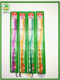 Transparent Handles Hard Bristle Cheaper Packing Adult Toothbrush VIP Brand