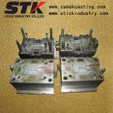 Precision Plastic Mould for Plastic Parts (STK-M1106)