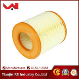 OEM No. 4f0133843 Auto Air Filter for Audi