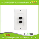 Dual Outlet Female HDMI Wall Plate