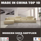 New Type Modular Sofa Lz2810