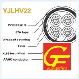 AAAC Conductor XLPE Insulation Sta Armored Aluminum Alloy Cable Yjlhv22