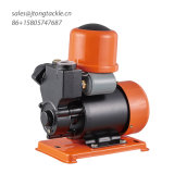 Smart Self Priming Deep Well Pump for Clean Water Garden Farm Gurantee Quality Reasonable Price Yl Pump