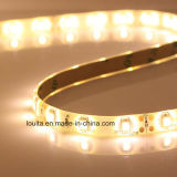 IP65 SMD 3528 300LEDs LED Flexible Strip Lighting