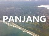Qingdao to Panjang Ocean Freight by Ocean FCL