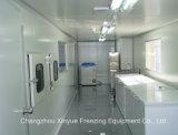 Quick Freezing Cold Storage Room for Icecream
