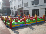 Durable and Reliable Inflatable Obstacle for Outdoor Playground (A512)
