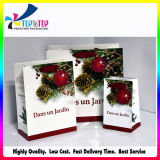 Customized Elegant Jewelry Packaging Paper Gift Bags