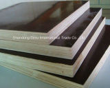 Linyi Factory Shuttering Plywood Price Phenolic Film Faced Plywood for Building Material