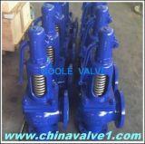 DIN Ari GS-C25 Steam Safety Relif Valve (GA900)