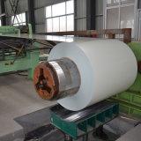Construction Use PPGI Prepainted Passivation Galvanized Steel Coil