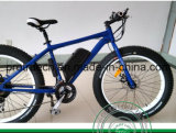 Kenda Fat Tire Electric Bicycle with Brushless Rear Motor