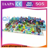 Long Style Indoor Playground Equipment (QL-3105B)