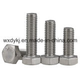 Stainless Steel Hexagon Head Hex Full Thread Bolt and Nut