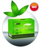 Weight Loss Slimming Green Coffee (GB-J007)
