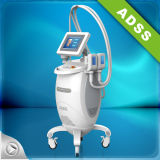 Salon Use Vertical Cryolipolysis Lose Weight Equipment