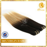 T-Color 100% Virgin Remy Human Hair Straight Hair Extension (TFH-NL0035)