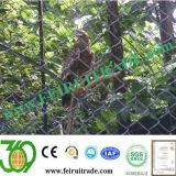 Frontier /Military Chain Link Security Fences