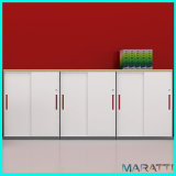 Office Filing Storage Cabinet for Office