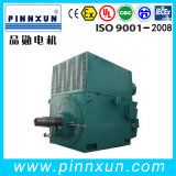 3300V Slip Ring Motor Factory
