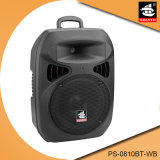 10 Inch Portable Battery Powered Active Multifunction Bluetooth Speaker
