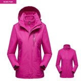 Factory Supply Windproof Biker Camping Hiking Winter Jacket for Woman