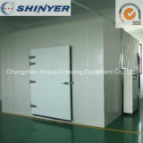Pre-Fab Cold Storage Room with Camlock Polyurethane Sandwich Panels