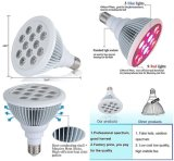 12W LED Grow Light for Indoor Mushroom Growth